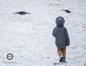 winter walk 11