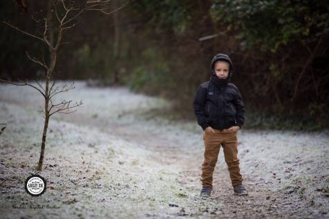 winter walk 9
